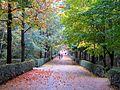 Landscape design, Parque del Retiro (6382406865).jpg