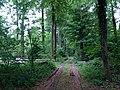 Landschaftsschutzgebiet Strothheide Melle Datei 15.jpg