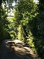 Lane near Chipley - geograph.org.uk - 906618.jpg