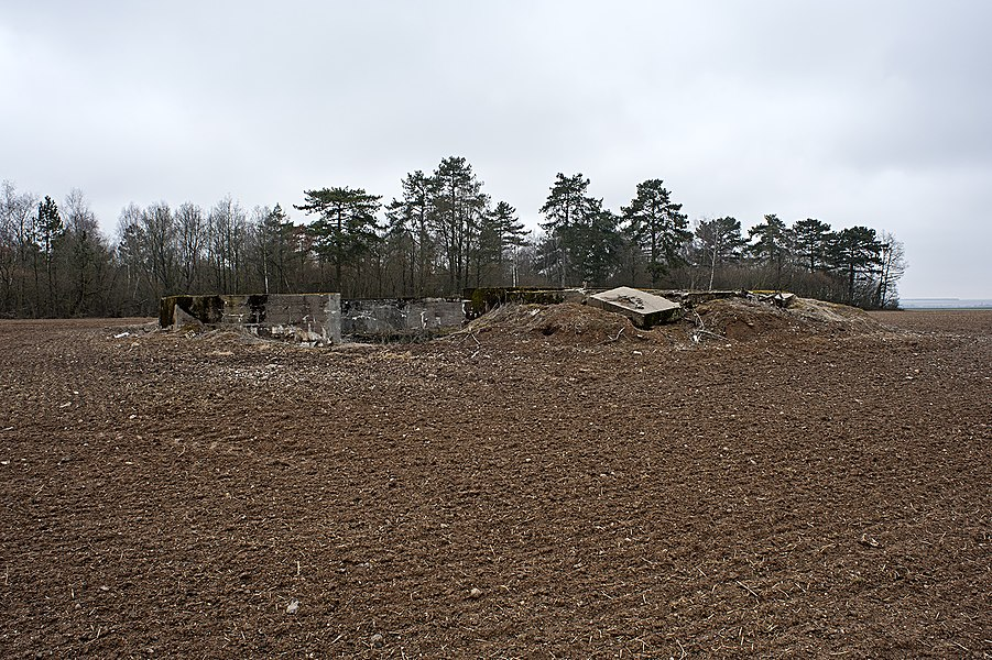 "Emplacement ""Langer Max"", view from south; Saint-Hilaire-le-Petit, Marne, France."