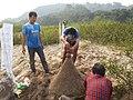Laos-10-105 (8686949812).jpg