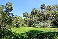 Lawn - Bok Tower Gardens - DSC02331.jpg