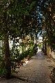 Lefkada Town IMG 5555.jpg - panoramio.jpg