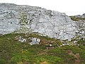 Limestone crags on Benbrack - geograph.org.uk - 201155.jpg