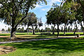 Little Lake Park, Santa Fe Springs CA viewing field.jpg