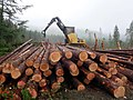 Logging Near Jump Lake - panoramio.jpg