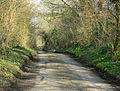 Long Lane heading east - geograph.org.uk - 1237934.jpg