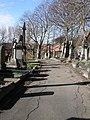 Long shadows at Dewsbury Cemetery - geograph.org.uk - 362056.jpg