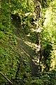 Lyon Arboretum - Aihualama Falls (8330357735).jpg