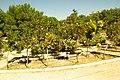 MADRID A.V.U. PARQUE PRADOLONGO - panoramio (41).jpg