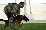 "MWDs ""pawsitively"" impact base security 160915-F-ES117-074.jpg"
