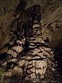 Magura cave, Exit hall - Jellyfish - Пещера Магурата, Изходна зала - медузите - panoramio (2).jpg
