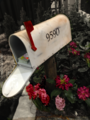 Mailbox in Flowers.png