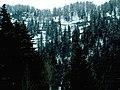 Maloja-hágó, Bergün-völgy.jpg