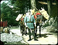 Man in local attire with loaded packhorses. (19955350431).jpg