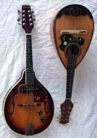 Electric mandolin - Mandolins: Electric carved top (left) and traditional.