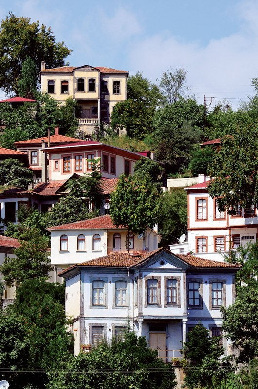 Mansions in Trabzon 2