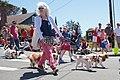 Manzanita, Oregon, 4th of July Parade 2017 (35341613270).jpg
