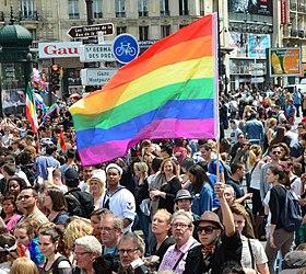 Le drapeau arc-en-ciel brandi lors de la Marche des fiertés de Paris en 2013.
