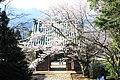 Matsunoo-dera (Maizuru) Niomon s2.jpg