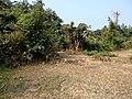 Mawlaik, Myanmar (Burma) - panoramio (10).jpg