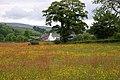 Meadow by Hill Farm - geograph.org.uk - 1381867.jpg