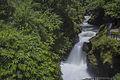 Milky stream of the Davis Falls.jpg