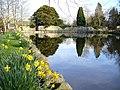 Mill Pond, New Abbey - geograph.org.uk - 397730.jpg
