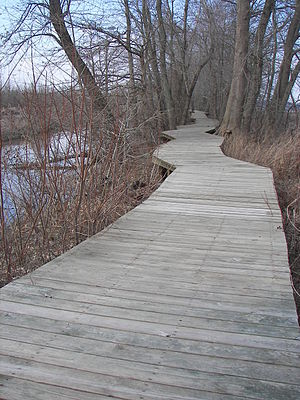 Mingo National Wildlife Refuge - A section of boardwalk trail leads to an observation platform.