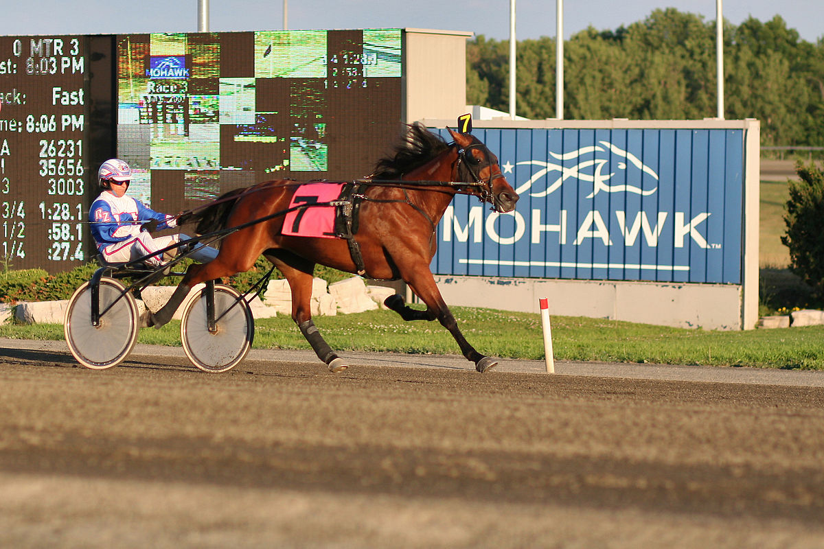 Mohawk Racetrack Live Racing