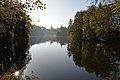 Moosburg Mitterteich Herbststimmung 02112014 536.jpg