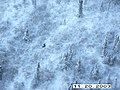 Moose Survey, Yukon-Charley, 2003 (bf7d737d-976a-4e2b-a63b-189b9aab307f).jpg
