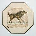 MosaiqueOrphée-Sanglier.jpg