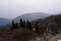Mt.Sengen (Hakone) 15.jpg