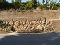 Muro en parcela para riego.JPG