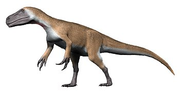 Murusraptor NT small.jpg