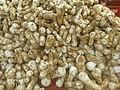 Mushroom of Achhro Thar Desert, Sindh.jpg