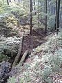 Náchod les.jpg