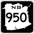 NB 950.png
