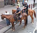 NYPD horseback2007.jpg