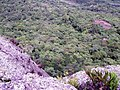 Na beira do abismo - panoramio.jpg