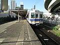 Nankai Shiomibashi Station platform - panoramio (18).jpg