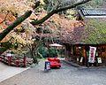 Nara-tea-house-in-Nara-Park.JPG