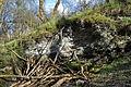 Naturschutzgebiet Am roten Steine - Hausberg - Schichten der unteren Jura (3).JPG