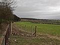 Near Bow Plantation, Welton - geograph.org.uk - 668036.jpg
