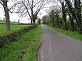 New Line Road - geograph.org.uk - 1268793.jpg