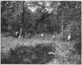 Newberry County, South Carolina. CCC enrollees furnish valuable assistance to farmers in Newberry C . . . - NARA - 522767.tif