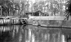Newport, Wakulla County, Florida - Image: Newport Florida ge 0668