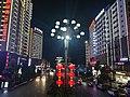 Nightscape of Panzhou1.jpg