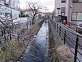 Nikaryo-yosui canal , Musashi-Kosugi , Kawasaki - panoramio (3).jpg